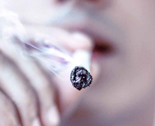 La Nicotine, accusée de rendre accro les fumeurs. Et si ce n'était pas Elle?